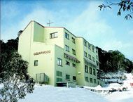 Cedarwood Apartments - Accommodation Mt Buller