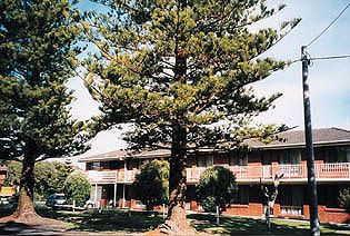 Eastern Beach Holiday Units - Accommodation Mt Buller