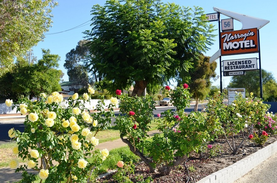 Narrogin Motel - Accommodation Mt Buller