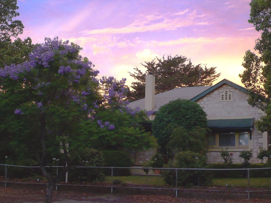 Angaston Rose BB - Accommodation Mt Buller