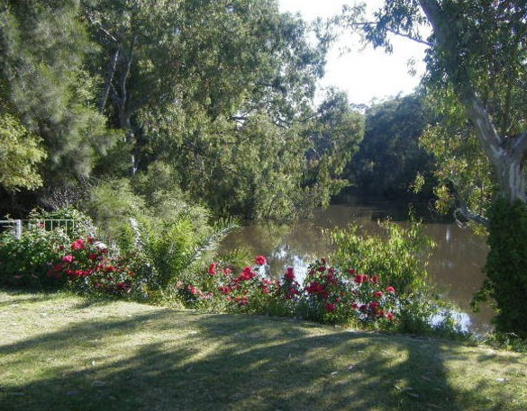 Bidgee Bankside Cottage - Accommodation Mt Buller