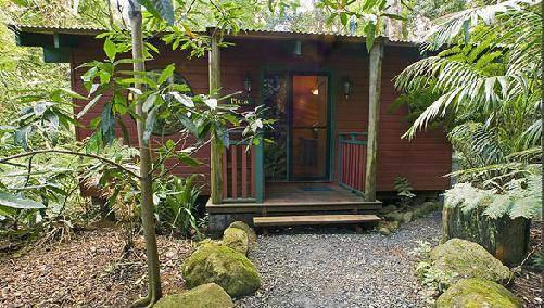 Springbrook Lyrebird Retreat - Accommodation Mt Buller