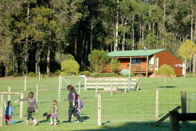 Diamond Forest Farm Stay - Accommodation Mt Buller