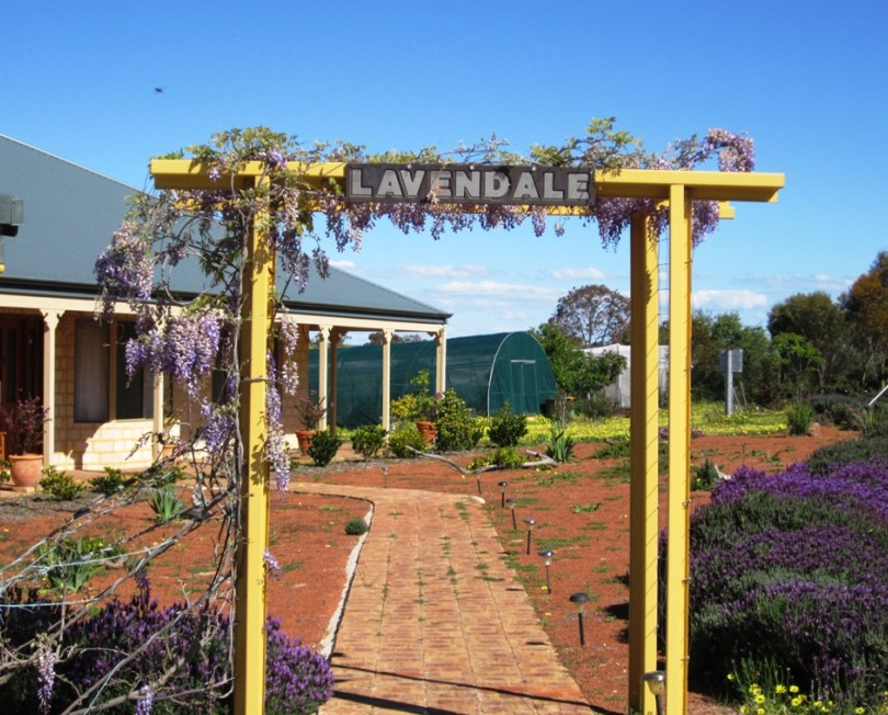 Lavendale Farmstay and Cottages - Accommodation Mt Buller