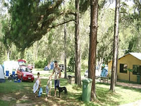 Glasshouse Mountains Holiday Village - Accommodation Mt Buller