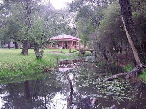 Kangaroo Gully Cottage - Accommodation Mt Buller