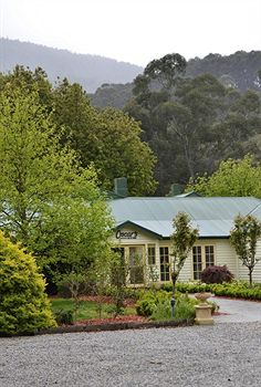 Best Western Yarra Valley - Accommodation Mt Buller