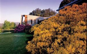 CountryPlace - Accommodation Mt Buller