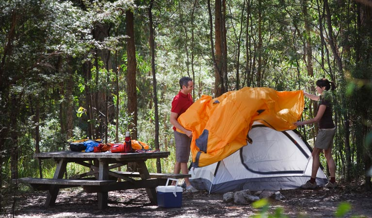 Bald Rock campground and picnic area - Accommodation Mt Buller