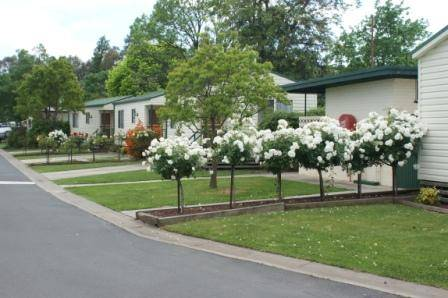 Wodonga Caravan  Cabin Park - Accommodation Mt Buller