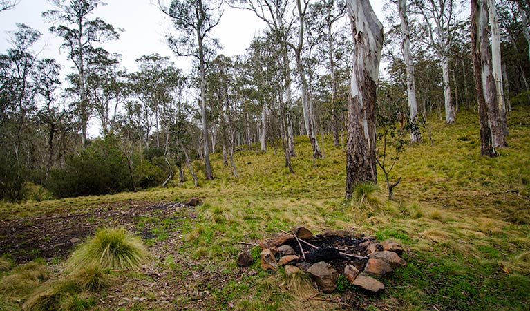 Gummi Falls campground - Accommodation Mt Buller