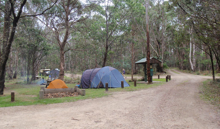 Native Dog campground - Accommodation Mt Buller