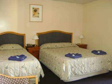 Mudgee Motor Inn - Accommodation Mt Buller