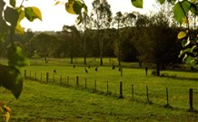 Stone Cottage Mittagong - Accommodation Mt Buller