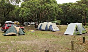 Pretty Beach Campground Murramarang National Park - Accommodation Mt Buller