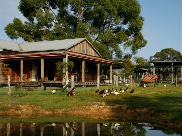 Tobruk Sydney Farm Stay - Accommodation Mt Buller