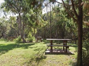 Illaroo group camping area - Accommodation Mt Buller