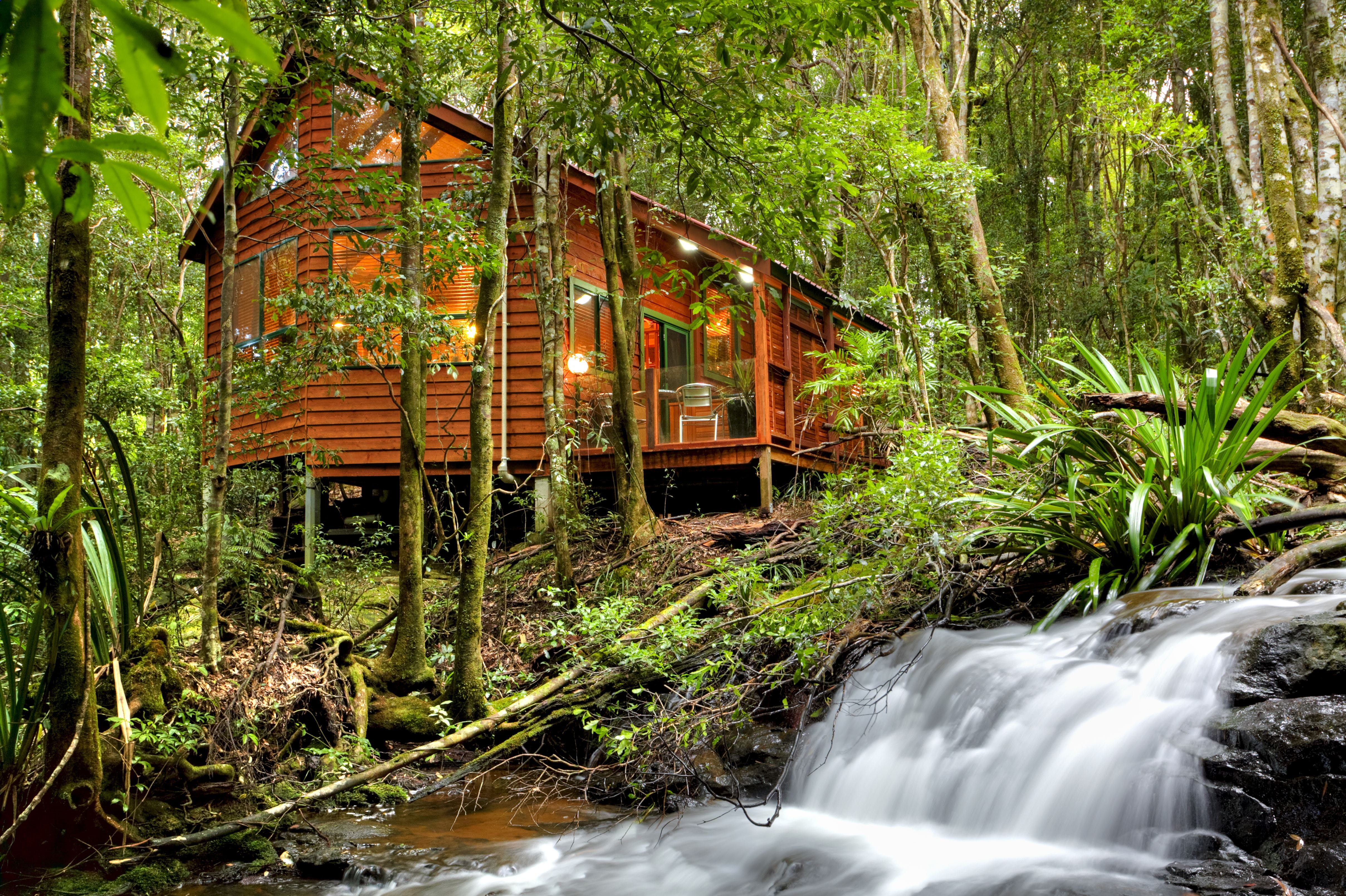 The Mouses House - Rainforest Retreat - Accommodation Mt Buller