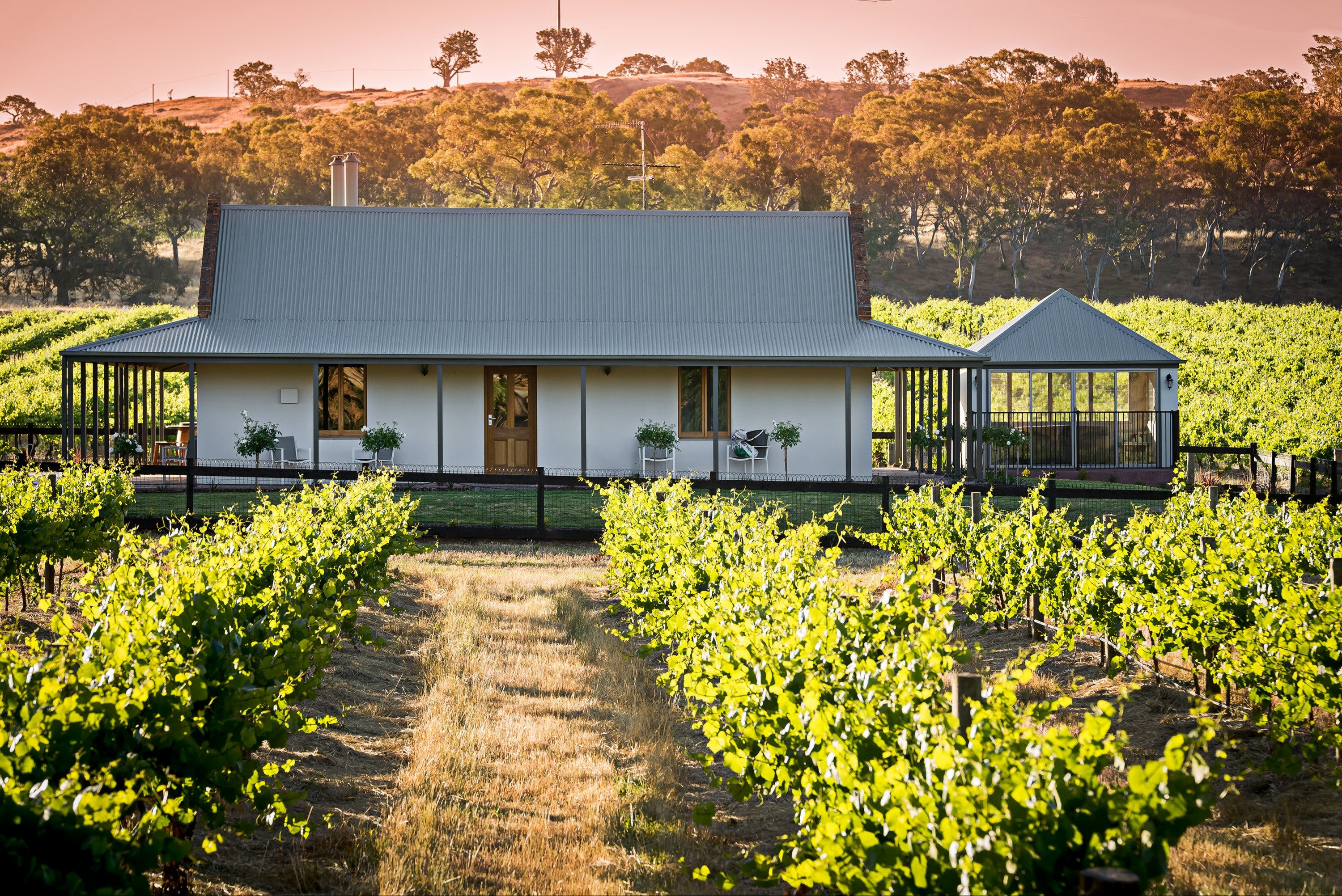 Brockenchack Vineyard Luxury Bed  Breakfast - Accommodation Mt Buller