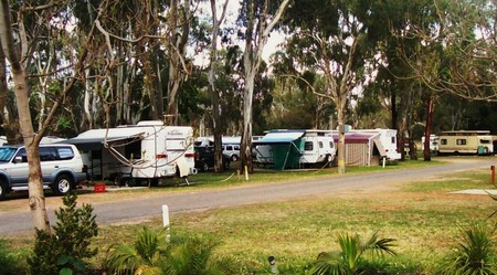 Buronga Riverside Tourist Park - Accommodation Mt Buller