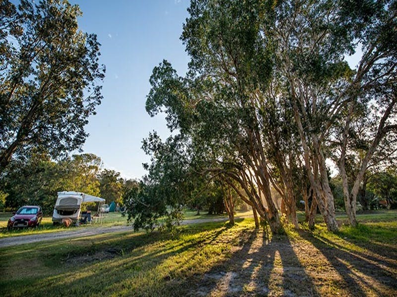 Delicate campground - Accommodation Mt Buller