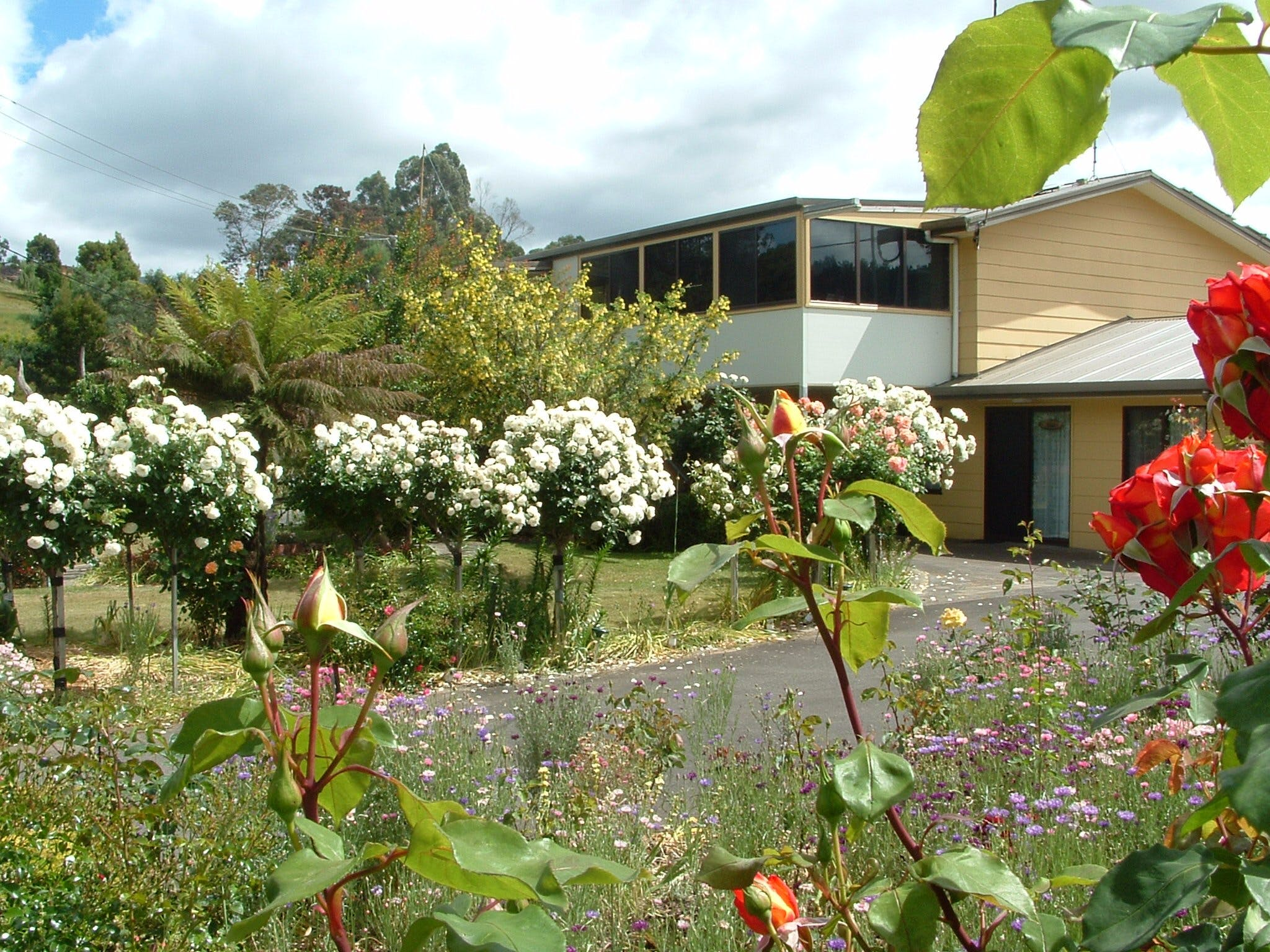 North East Restawhile Bed and Breakfast - Accommodation Mt Buller