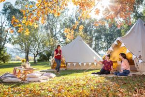 Valley View Glamping - Accommodation Mt Buller