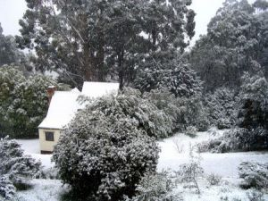 Tranquillity Cottage - Accommodation Mt Buller