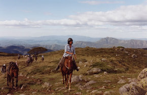 High Country Horses - Accommodation Mt Buller