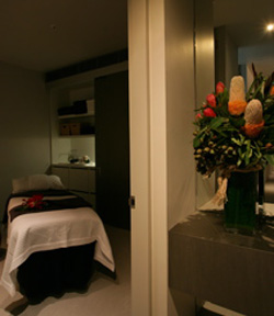 Alkaline Spa  Clinic - Accommodation Mt Buller
