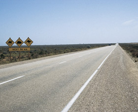 Eyre Highway - Accommodation Mt Buller
