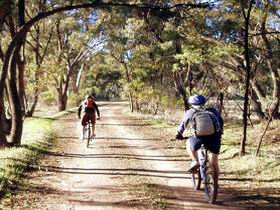 Bike About Mountain Bike Tours And Hire - Accommodation Mt Buller
