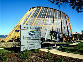 Forest EcoCentre - Accommodation Mt Buller