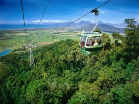 Skyrail Rainforest Cableway - Accommodation Mt Buller