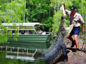 Hartleys Crocodile Adventures - Accommodation Mt Buller