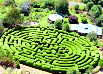 Wandiligong Maze - Accommodation Mt Buller