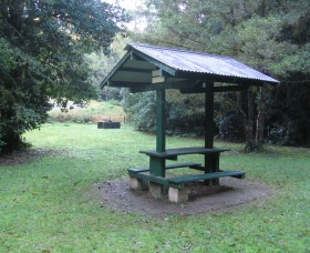 Pine Creek State Forest - Accommodation Mt Buller