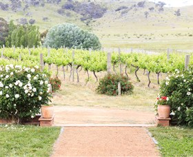 Brindabella Hills Winery - Accommodation Mt Buller