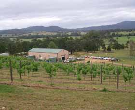 Villa d Esta Vineyard - Accommodation Mt Buller