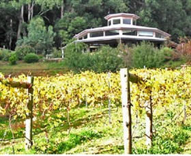 Peveril Vineyard/Beechy Berries - Accommodation Mt Buller
