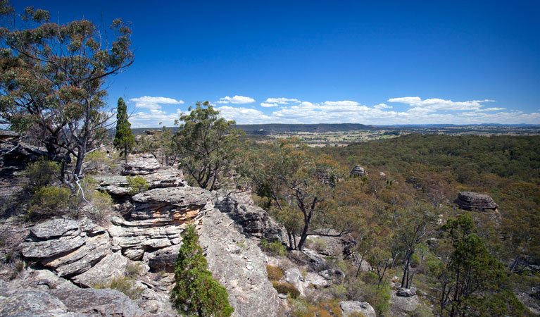Munghorn Gap Nature Reserve - Accommodation Mt Buller