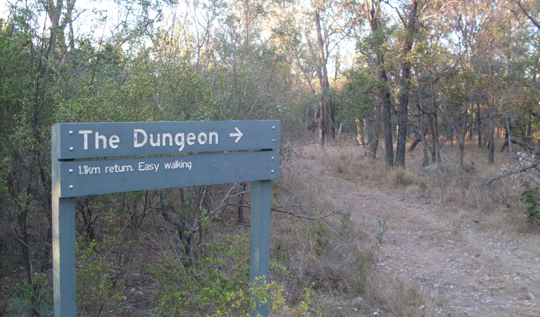 Dungeon lookout - Accommodation Mt Buller