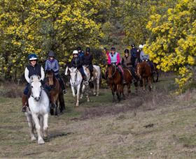 Burnelee Excursions on Horseback - Accommodation Mt Buller
