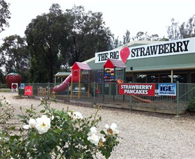 The Big Strawberry - Accommodation Mt Buller