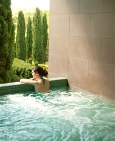 The Mineral Spa - Accommodation Mt Buller