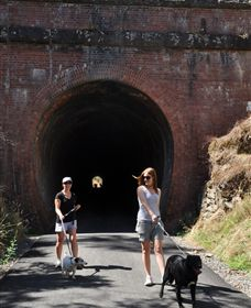 Cheviot Tunnel - Accommodation Mt Buller