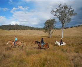 Chapman Valley Horse Riding - Accommodation Mt Buller