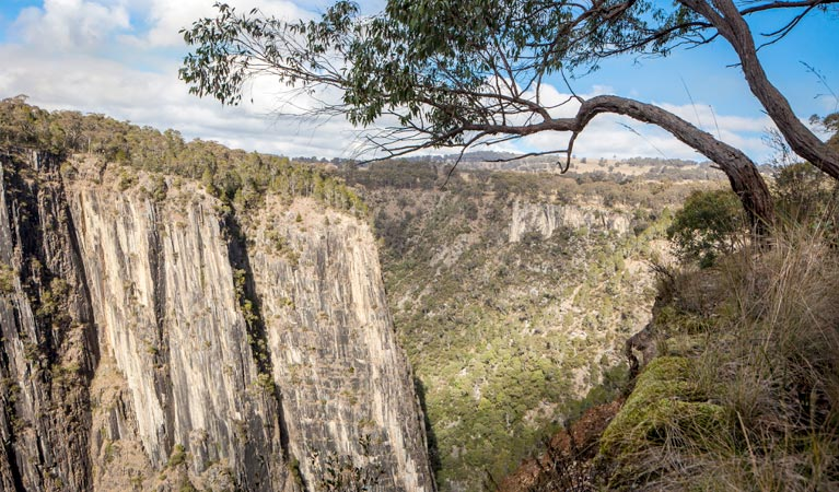 Apsley Gorge Rim walking track