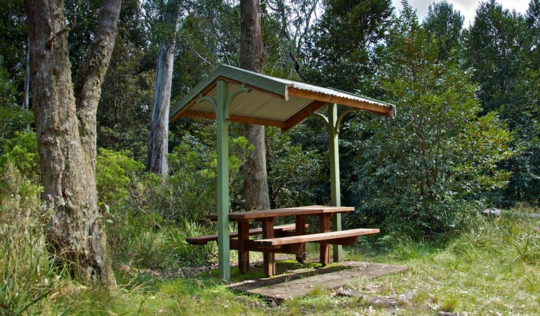 Devils Hole lookout walk and picnic area - Accommodation Mt Buller