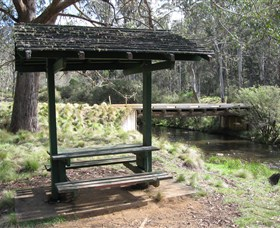 Barrington Tops State Forest - Accommodation Mt Buller